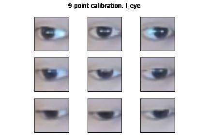 Left eye calibration